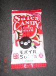 suica candy.JPG